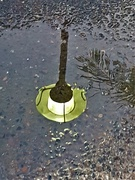 29th Feb 2020 - Street Light Reflection In a Puddle ~