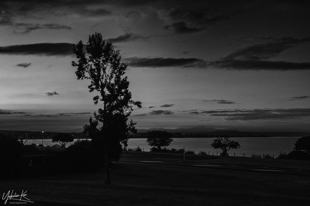 Lake Taupo View by yorkshirekiwi