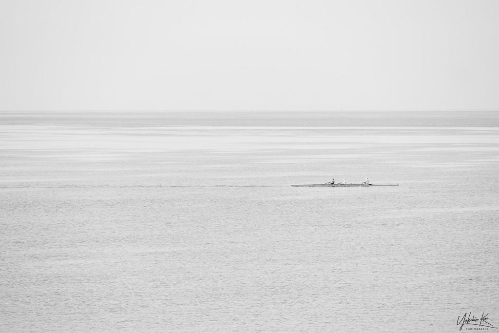 Rowers on Lake Taupo by yorkshirekiwi