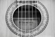 28th Feb 2020 - Classical sound