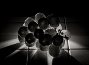 28th Feb 2020 - Low Key:  Kitchen Counter Grapes