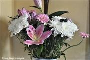 29th Feb 2020 - My birthday flowers