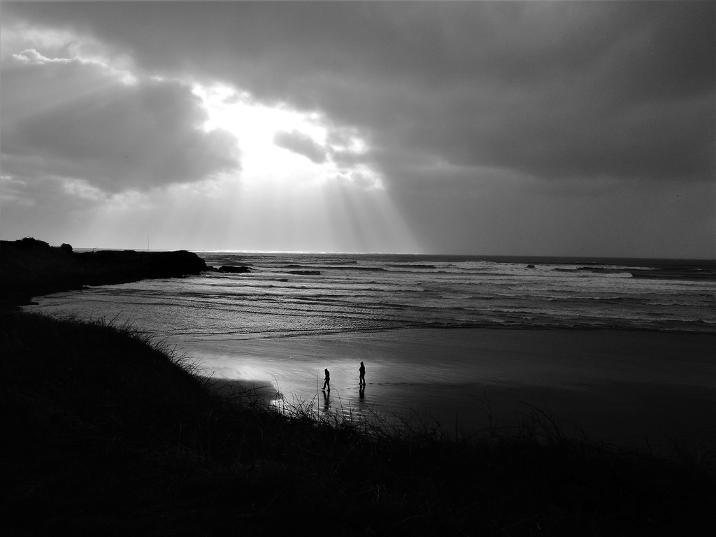 Low key - Beach this morning by etienne