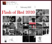 29th Feb 2020 - Flash of Red Calendar 2020