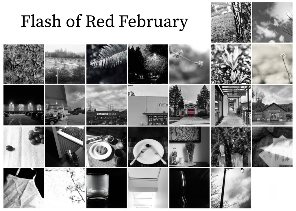 Flash of Red February 2020 by cristinaledesma33