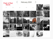 29th Feb 2020 - Flash of Red Month 2020