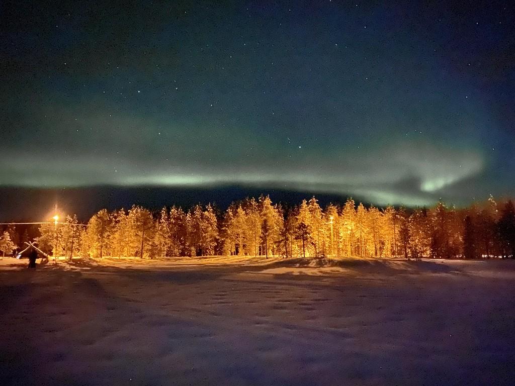 Aurora over Ranua by darrenboyj