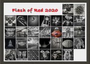 1st Mar 2020 - Flash of Red 2020