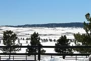 28th Feb 2020 - Snowy Vista