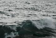 28th Feb 2020 - waves