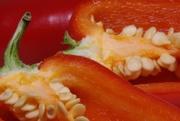 2nd Mar 2020 - Red Pepper