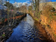 2nd Mar 2020 - One of Sheffield's five rivers - The river Loxley