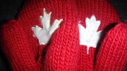2nd Mar 2020 - Red Mittens