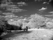 20th Jan 2020 - Infrared Orford Castle