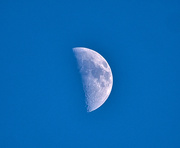 2nd Mar 2020 - Half Moon.