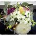 Charming little flowers... by gijsje