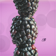 2nd Mar 2020 - The Many Facets of Berries
