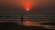 28th Feb 2020 - Goa, India