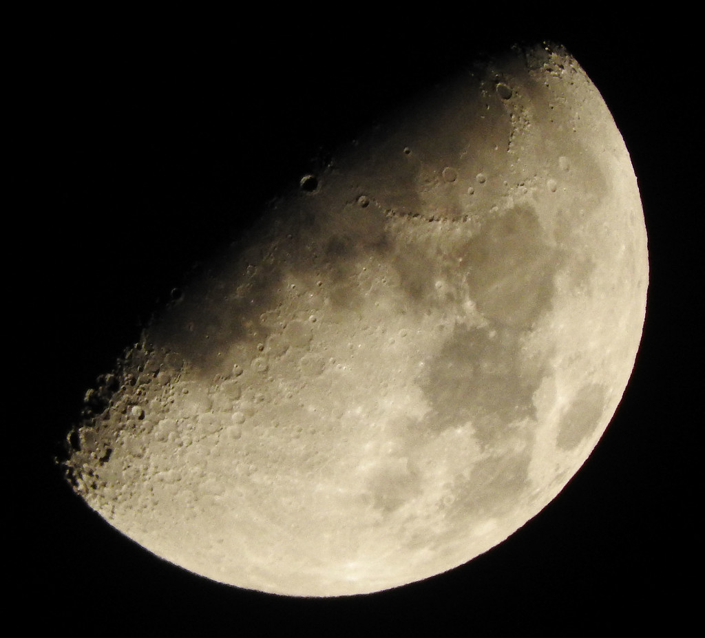 The moon and it's craters by homeschoolmom