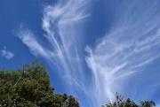 5th Mar 2020 - Beautiful Wispy Clouds ~