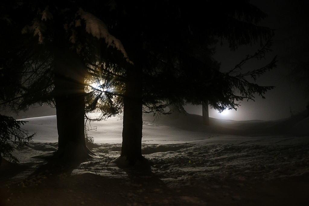 Snow at night by caterina