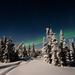 Aurora Borealis, Alaska  by dridsdale
