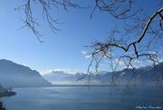 27th Feb 2020 - Leman lake