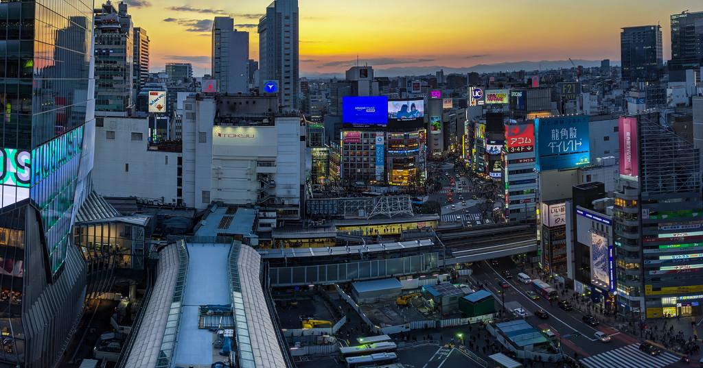 Shibuya by tokyobogue