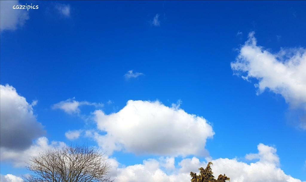 Blue Sky by serendypyty