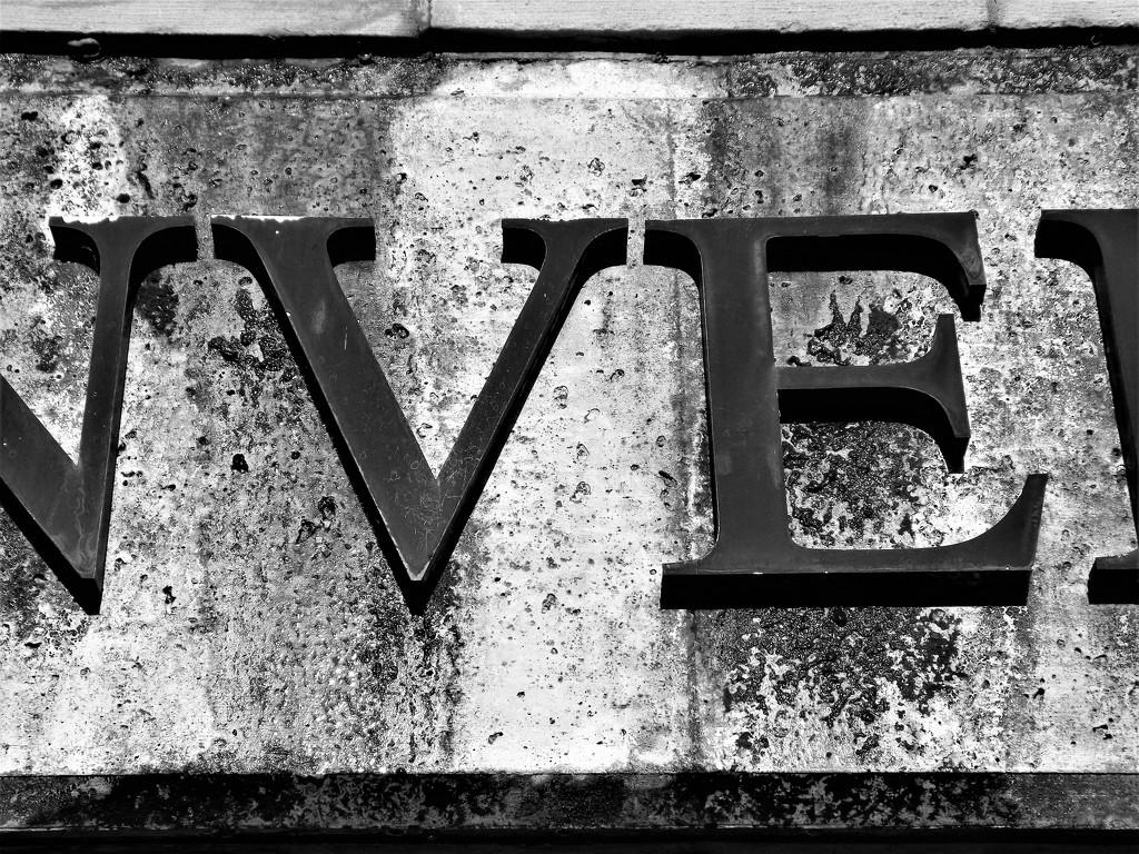 'VE' by ajisaac