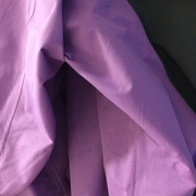 7th Mar 2020 - Purple