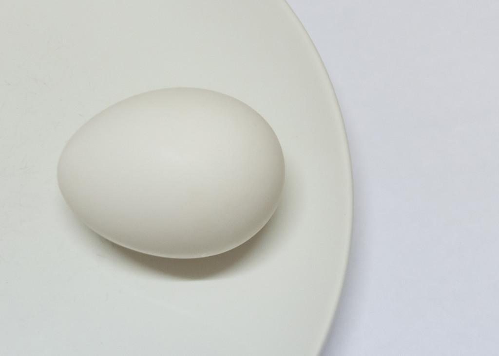 White on White on White  by salza