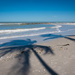 Palm Tree Shadows on Naples Beach