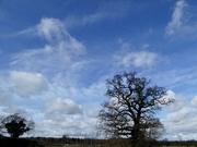8th Mar 2020 - Dramatic sky