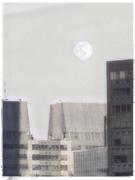 8th Mar 2020 - The Worm Moon