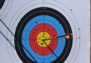 7th Mar 2020 - Almost a bullseye
