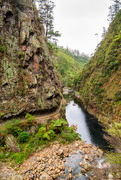 10th Mar 2020 - Karangahake Gorge