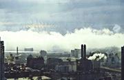10th Mar 2020 - Boston Fog