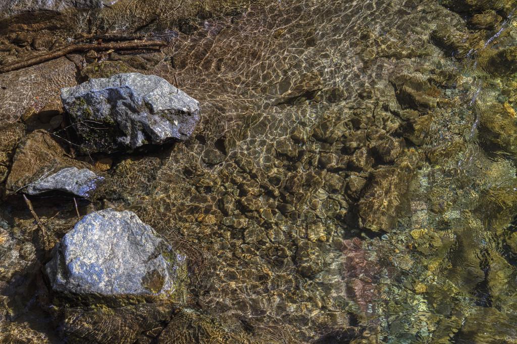 Trout Stream by kvphoto
