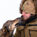 The bond between a musher and his sled dog