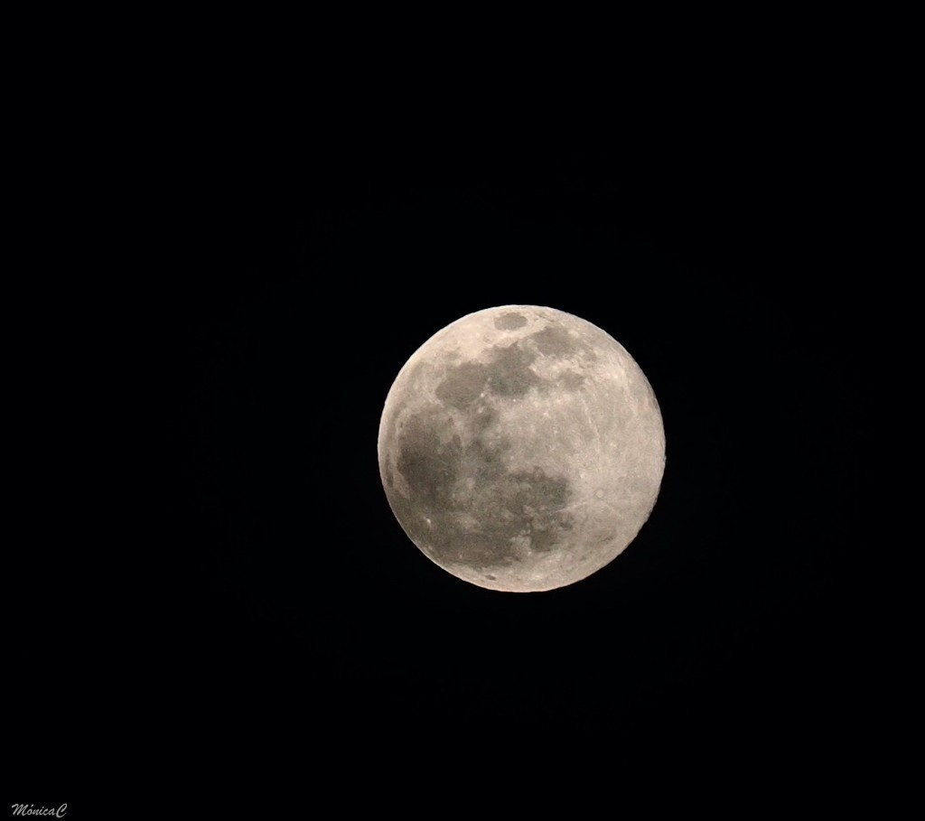 Full moon by monicac