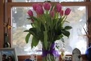 10th Mar 2020 - Tulips