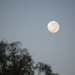 Morning Moon - 7.12am - Southern Hemisphere
