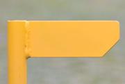 11th Mar 2020 - Something (?) Yellow