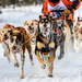 North Pole Championships