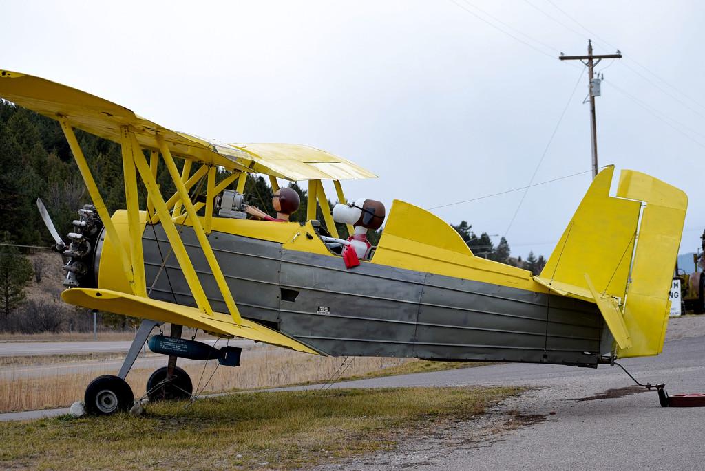 Yellow Biplane  by bjywamer