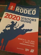 12th Mar 2020 - Houston Rodeo now cancelled.