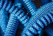 13th Mar 2020 - Blue Hose