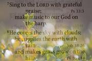 14th Mar 2020 - Grateful Praise