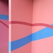15th Mar 2020 - Pinks